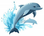 Wave - Male Dolphin (1 month)